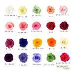ロザヴィ社製ローズ アヴァ 1輪 特価 プリザーブドフラワー バラ 単品 花材