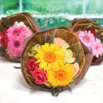 プリザーブドフラワー ギフト ミニブーケ ガーベラ カーネーション バラ入り 花束  フラワー 誕生日  プロポーズ 発表会