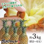 送料無料 沖縄県産 スナックパイン 約3kg 約3〜6玉 沖縄 パイナップル ボゴールパイン お中元 御中元 母の日 ギフト