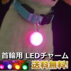 首輪用 LED ライト チャーム 犬 夜間安心 光る 送料無料