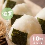 滋賀県 市原地区限定 環境こだわり米  令和元年産 こしひかり 5k×2本