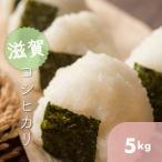 滋賀県 市原地区限定 環境こだわり米 令和元年産 こしひかり 5k