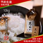 令和2年度 予約生産 米 お米10kg 無洗米にて精米 送料無料 清流きぬひかり芥田川