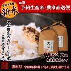 令和2年度 予約生産 米 お米10kg×2 20kg 無洗米にて精米 清流きぬひかり芥田川 送料無料