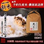 令和2年度 予約生産 米 お米 30kg 玄米にて 清流きぬひかり芥田川 送料無料