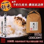 令和2年度 予約生産 米 お米 30kg 無洗米にて精米 清流きぬひかり芥田川 送料無料