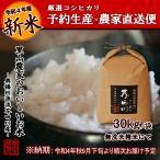 令和2年度 予約生産 米 お米 30kg 送料無料 無洗米 精米 奥播州源流芥田川産こしひかり芥田川