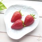 白い食器 果実フルーツプレート イチゴ いちご 苺 ストロベリー