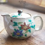 和食器 九谷焼 ティーポット 急須 カテキンたっぷり緑茶 鉄仙 茶漉し付き お茶 紅茶 食器 日本製