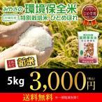 新米 ひとめぼれ 米 5kg×1袋 お米 5kg 29年産 宮城県産 白米 環境保全米 送料無料 精白米