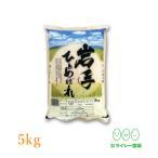 米 ひとめぼれ 米 5kg×1袋 お米 5kg 令和2年産 岩手県産 白米 送料無料 精白米