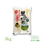 ひとめぼれ 米 5kg×1袋 お米 5kg 令和2年産 宮城県産 里山ひとめぼれ 白米 送料無料 精白米