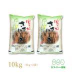 新米 ササニシキ 宮城県産 米 5kg×2袋 お米 10kg 29年産 宮城県産 白米 送料無料 精白米