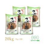 ササニシキ 宮城県産 米 5kg×4袋 お米 20kg 令和2年産 宮城県産 白米 送料無料 精白米