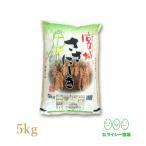 新米 ササニシキ 宮城県産 米 5kg×1袋 お米 5kg 令和元年産 宮城県産 白米 送料無料 精白米