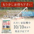 ショッピング予約 新米予約 10月上旬から順次発送 / つや姫 5kg×2袋 米 白米 お米 10kg 29年産 宮城県産 送料無料 精白米