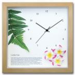 ハワイアン クロック 人工観葉植物 掛け時計 プルメリア ピンク レザーファーン ナチュラル