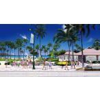 �����������ϥ磻 �ϥ磻���� �����ȥѥͥ롡���������Х���HAWAII OF HAWAII