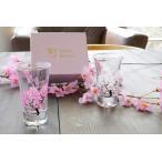 【ランキング1位】(あすつく可)(3セット〜送料無料)温度で楽しむ・丸モ高木陶器・桜が満開冷感桜 グラス天開ペアセット 母の日 父の日 結婚祝い 敬老の日