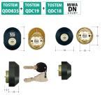 TOSTEM トステム LIXIL リクシル 鍵 交換用 DNシリンダー QDD835 QDC18 QDC19 DDZZ3017 ブラック 2個同一