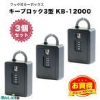 その他生活雑貨 フック式 カギ 鍵 保管 カードも入るキーボックス キーブロック4型KB-12000 (3個セット)