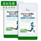 アルファリポ酸+カルニチン 約3か月分×2袋 C-205-2 送料無料 サプリ サプリメント