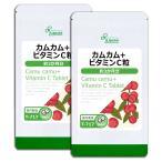 カムカム+ビタミンC粒 約3か月分×2袋 T-717-2 送料無料 サプリ サプリメント