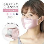 シルクマスク フィルターポケット付き 絹 シルク100% 洗える 布マスク ノーズフィット 不織布フィルター ナイトマスク 美容 保湿 立体 耳が痛くない