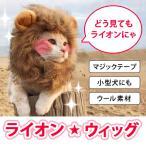 Yahoo!通販ショップ ライズねこ たてがみ ライオン ペット 帽子 かぶりもの グッズ コスプレ コスチューム アクセサリー