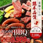 焼肉 BBQ キャンプ 火の国セット(6~8人前) 2100g 牛肉 豚肉 鶏肉 九州 熊本 焼き肉 バーベキュー 送料無料 ギフト 肉 食べ物 おつまみ 馬刺