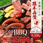 焼肉 BBQ キャンプ 火の国セット(18~22人前) 6350g 牛肉 豚肉 鶏肉 馬肉 九州 熊本 焼き肉 送料無料 ギフト 肉 食べ物 おつまみ 馬刺