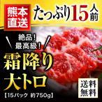 肉 馬刺し 熊本 大トロ 霜降り 750g 約50g×15パック 約15人前 馬肉 馬刺 送料無料 ギフト 肉 食べ物 おつまみ 馬刺