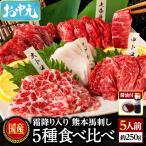 お歳暮 肉 馬刺し 熊本 国産 醤油付き 5種食べ比べセット 約300g 約6人前 馬肉 馬刺 送料無料 ギフト 肉 食べ物 おつまみ クリスマス