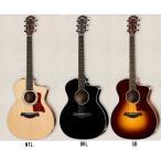 Taylor/テイラー アコースティックギター 【エレアコ】 214ce-DLX