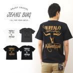 半袖 Tシャツ メンズ BUFFALO オリジナル バッファロー アメカジ プリント インディアン ネイティブアメリカン レディース 大きいサイズ ST-BUFFALO
