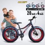 ファットバイク 20インチ FATBIKE 極太タイヤ 4インチ 7段変速 Wディスクブレ ーキ