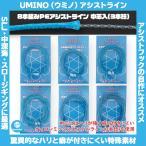 /メール便可/ UMINO (ウミノ) PEアシストライン 徳用パック 中芯入 80lb~250lb (10号〜30号)  SLJ 中深海 スロージギング
