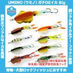 /メール便可/ UMINO (ウミノ) ガチDEイカ Big 1セット入 イカ型ルアー タイラバ 鯛ラバ 仕掛け