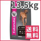 ユーカヌバ 1-4歳 健康維持 大型成犬用 13.5kg【送料無料】