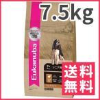 ユーカヌバ ラム&ライス シニア 7 犬用 7.5kg【送料無料】