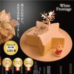 ☆形がキュート♪クリスマスケーキ ホワイトフロマージュ
