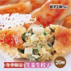 餃子 取り寄せ マツコの知らない世界に当店が紹介されました 生姜生餃子 冷凍 餃子工房ロン みまつ食品