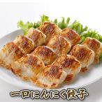 餃子 お取り寄せ 一口にんにく餃子 青森県産にんにく使用 粗切りカットにんにく使用 2/29は「にんにくの日」 期間限定 自宅 ギフト 通販 リピート