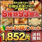 餃子やしゅうまいが5種類53個入り!点心お試しロンロンセット 送料無料(7413)