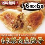 もち豚肉生餃子(6袋入り)業務用  送料無料(沖縄別途送料1,080円)