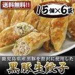 黒豚生餃子(6袋入り) 業務用 送料無料(沖縄別途送料1,080円)