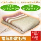 電気毛布 掛け敷き毛布 コントローラー付 テクノス TEKNOS 洗える掛敷毛布 大判 ダブルサイズ EM-W801