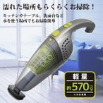 コードレスハンディクリーナー Wet&Dry Pico VERSOS ベルソス VS-6003 ガンメタ×ライトグリーン