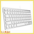 在宅勤務 テレワーク mac キーボード 有線 コンパクト サイズ US配列 mac Windows兼用 静音性に優れたシザースイッ
