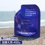 洗濯洗剤 海へ 洗剤 詰め替え用パック 450ml がんこ本舗 送料無料
